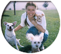 Gwen and 3 Friends at Santa Clarita Pet Nanny, Santa Clarita, California